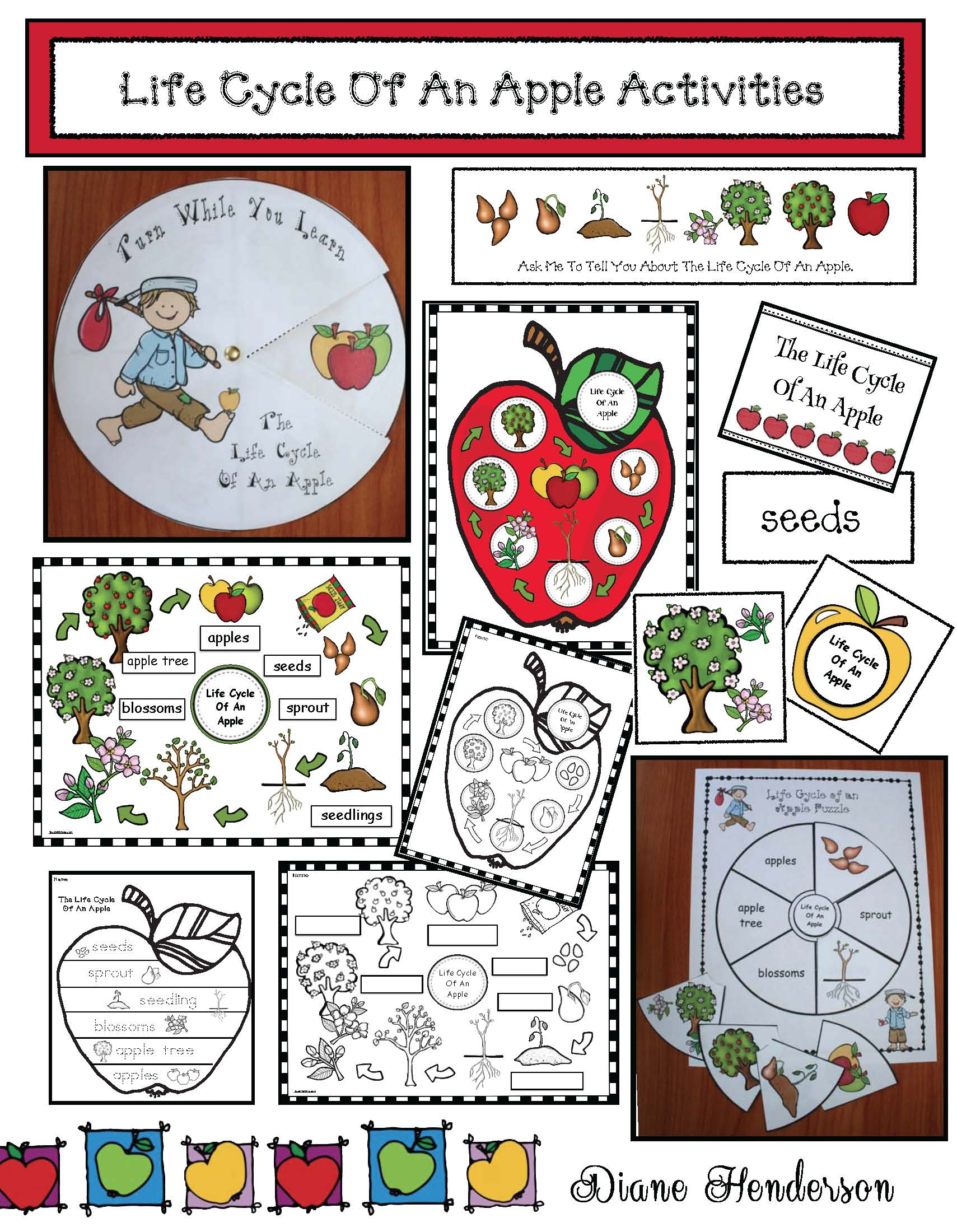 life cycle of an apple activities, life cycle of an apple crafts, life cycle of an apple centers, apple crafts, apple centers, 4 seasons activities, 4 seasons  of my apple tree activites