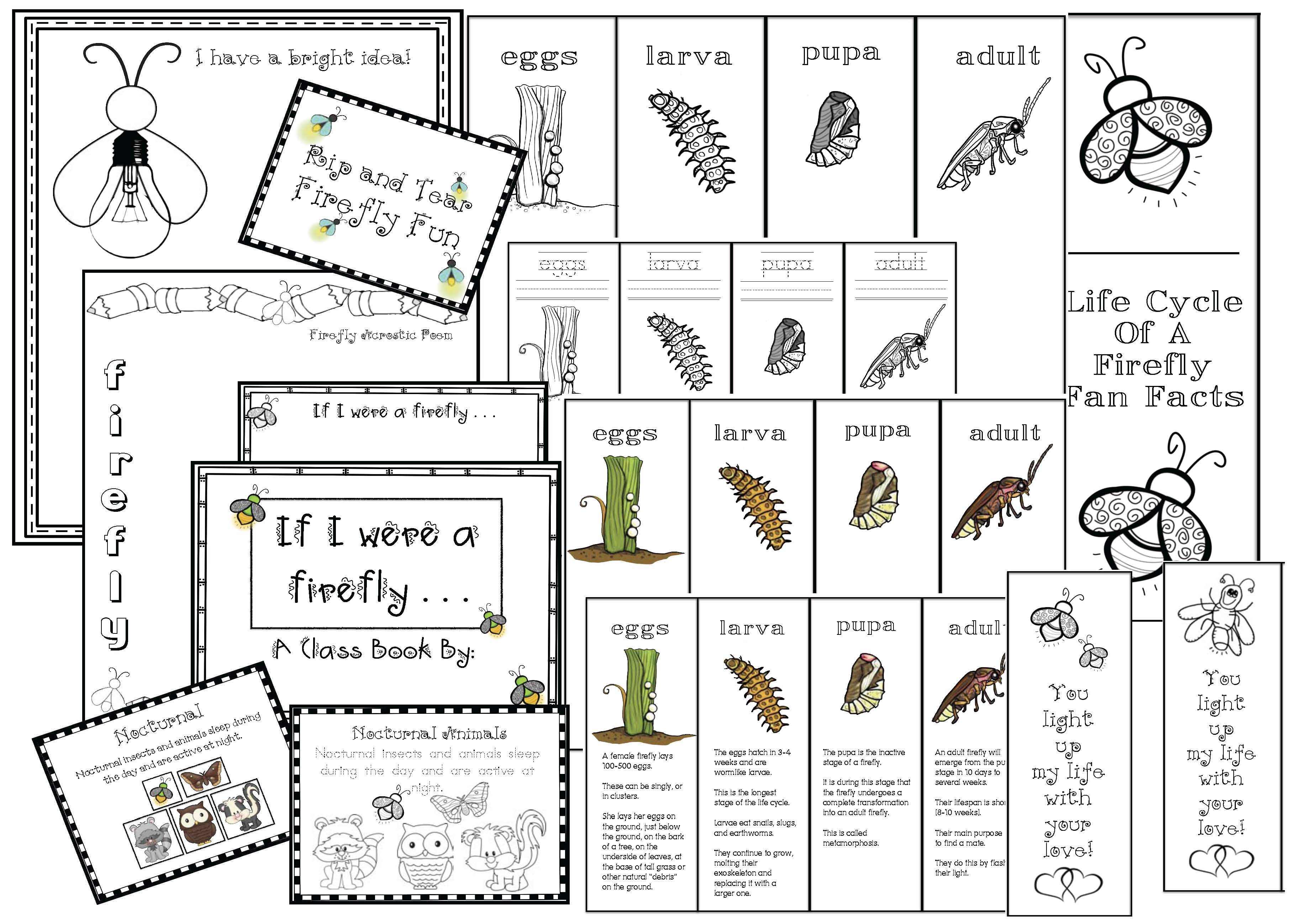firefly activities, firefly crafts, lifecycle of a firefly, firefly games, firefly word find, firefly poems, firefly photographs