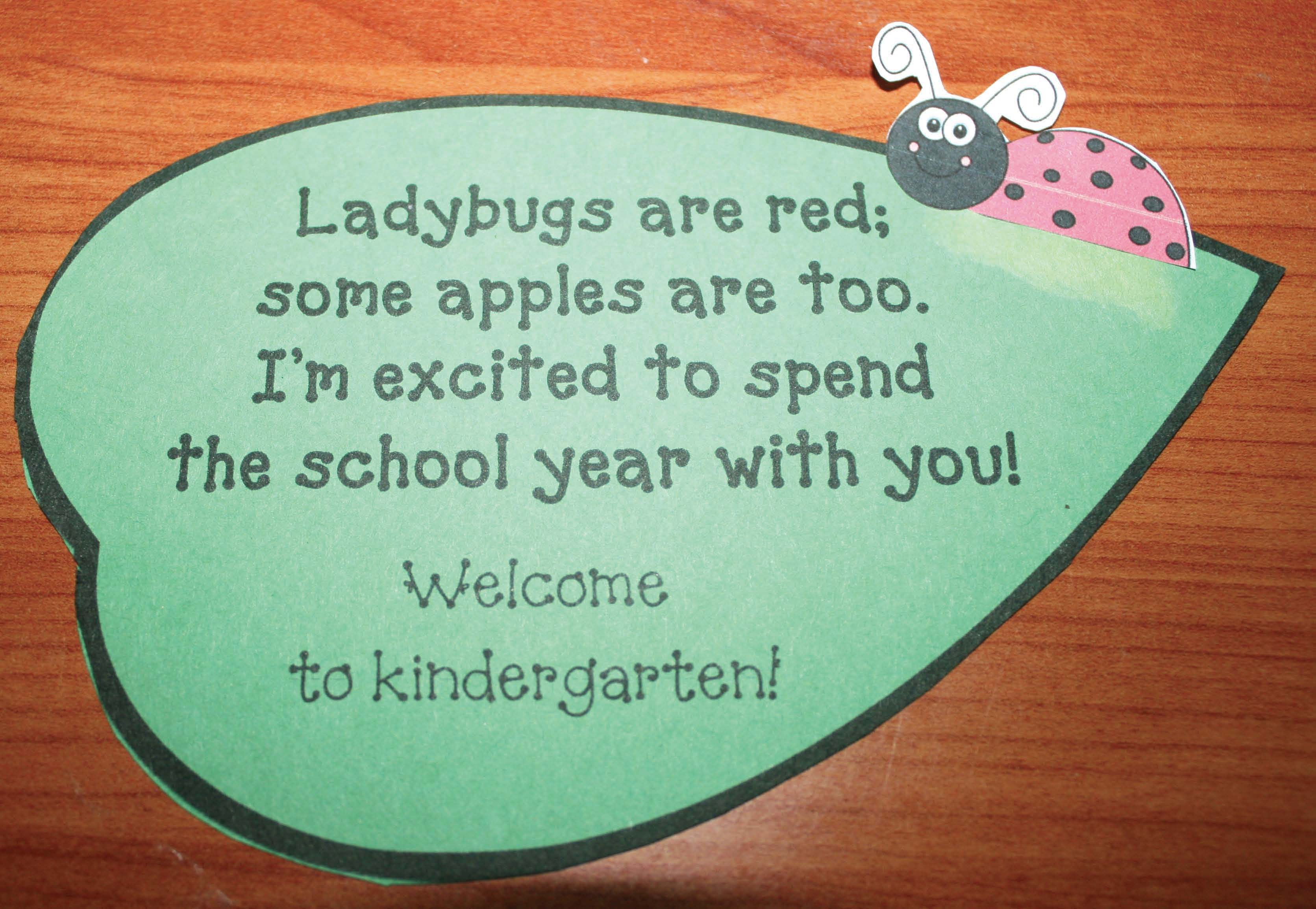 apple snacks, first day of school gifts, first day of school treats, first day of school ideas, ideas for the first day of school, 1st day treats, treat bags, ladybug stickers, apple poems