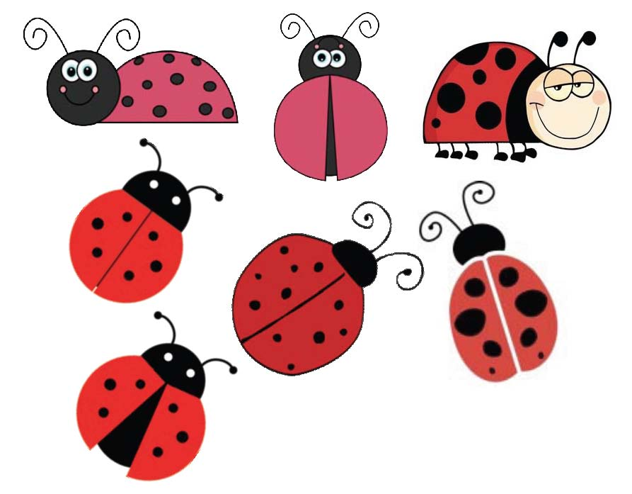 ladybug sticker samples