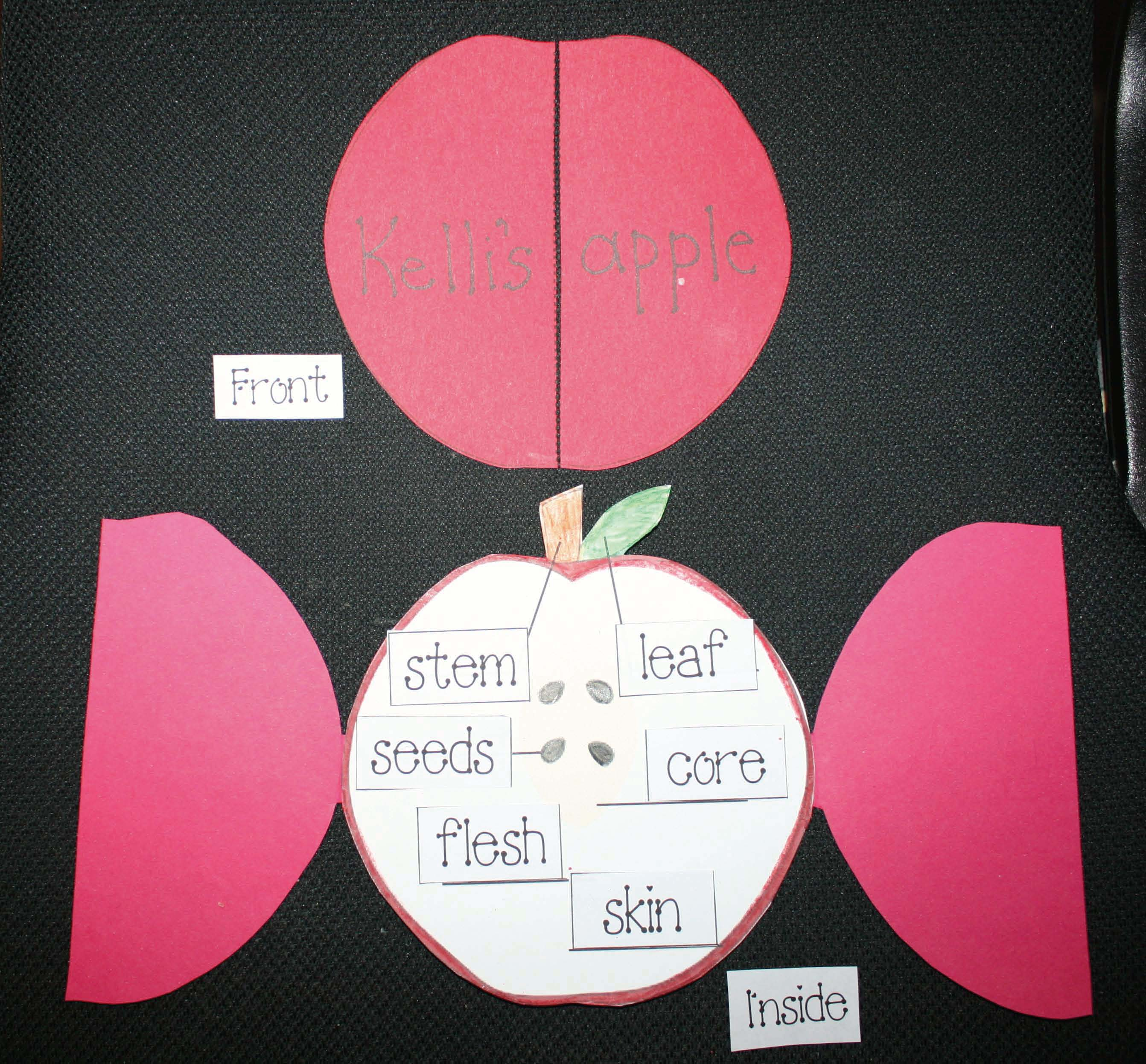apple crafts, apple activities, apple word find, antonym activities, synonym activities, adjective activities, label an apple
