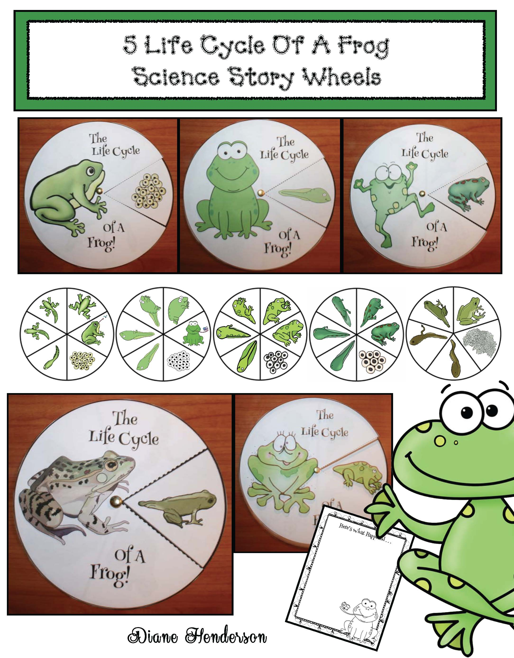 life cycle of a frog crafts, frog crafts, life cycle of a frog activities,