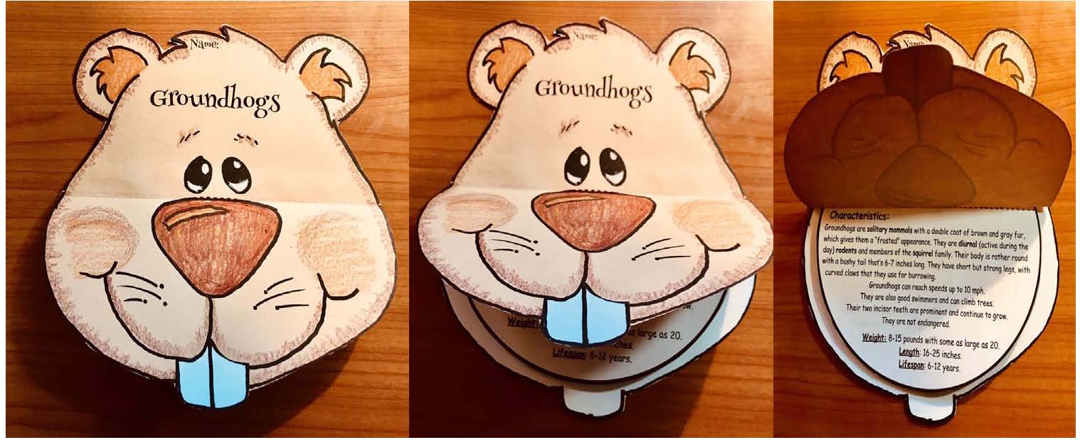 groundhog fun facts, groundhog crafts, groundhog centers, groundhog bulletin boards, writing prompts for February, non-fiction groundhogs, February bulletin board ideas
