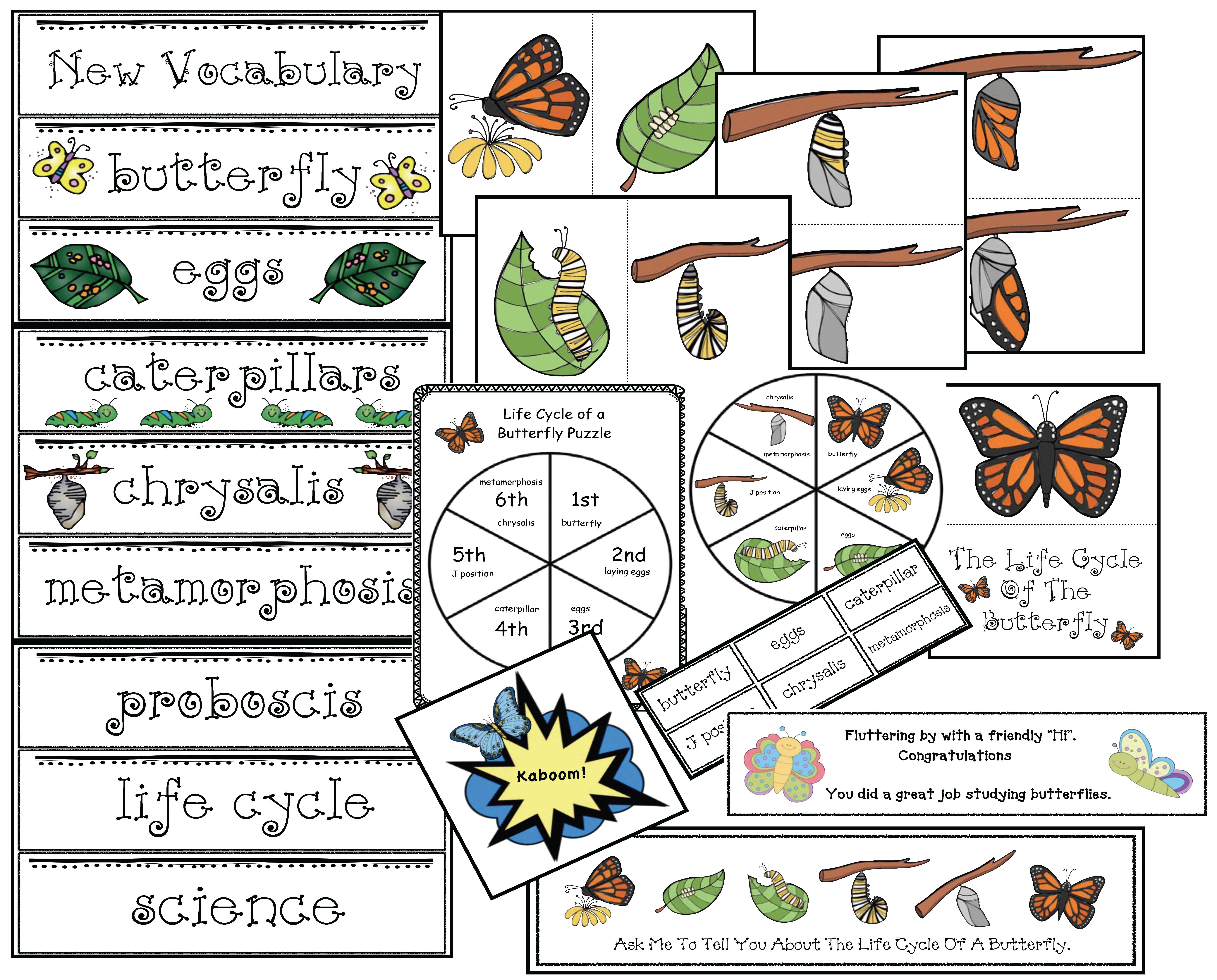 life cycle of a butterfly activities, life cycle of a butterfly crafts, the very hungry caterpillar activities, the very hungry caterpillar crafts