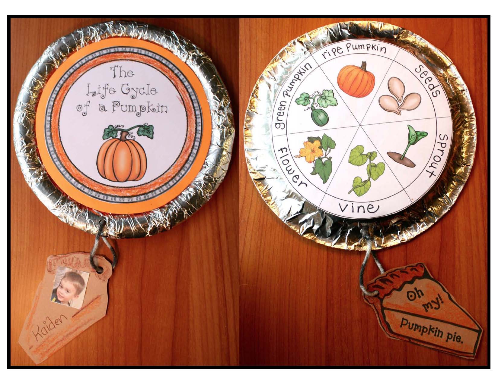 life cycle of a pumpkin, pumpkin crafts, pumpkin life cycle, pumpkin emergent reader,