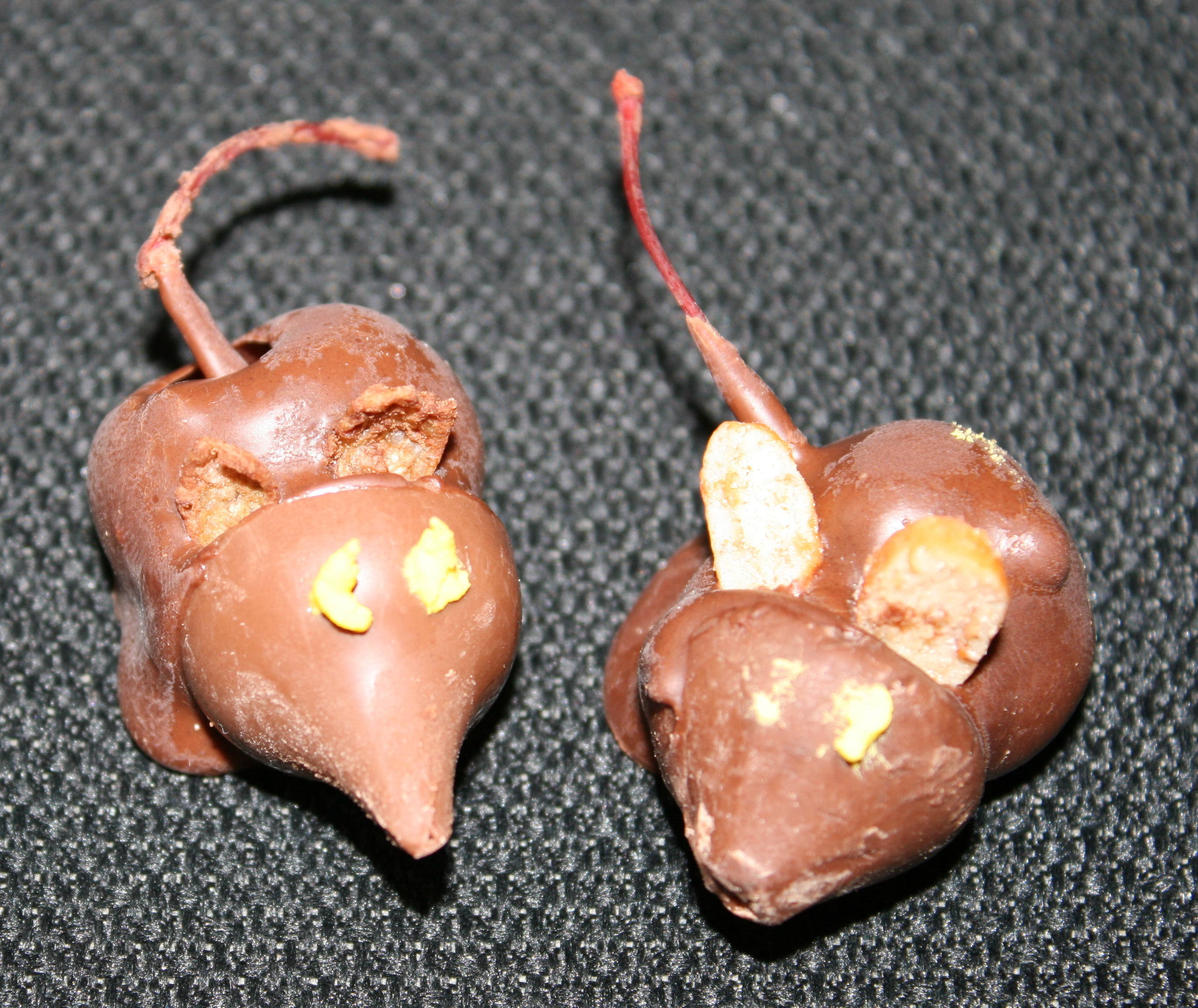 chocolate_cherry_mice