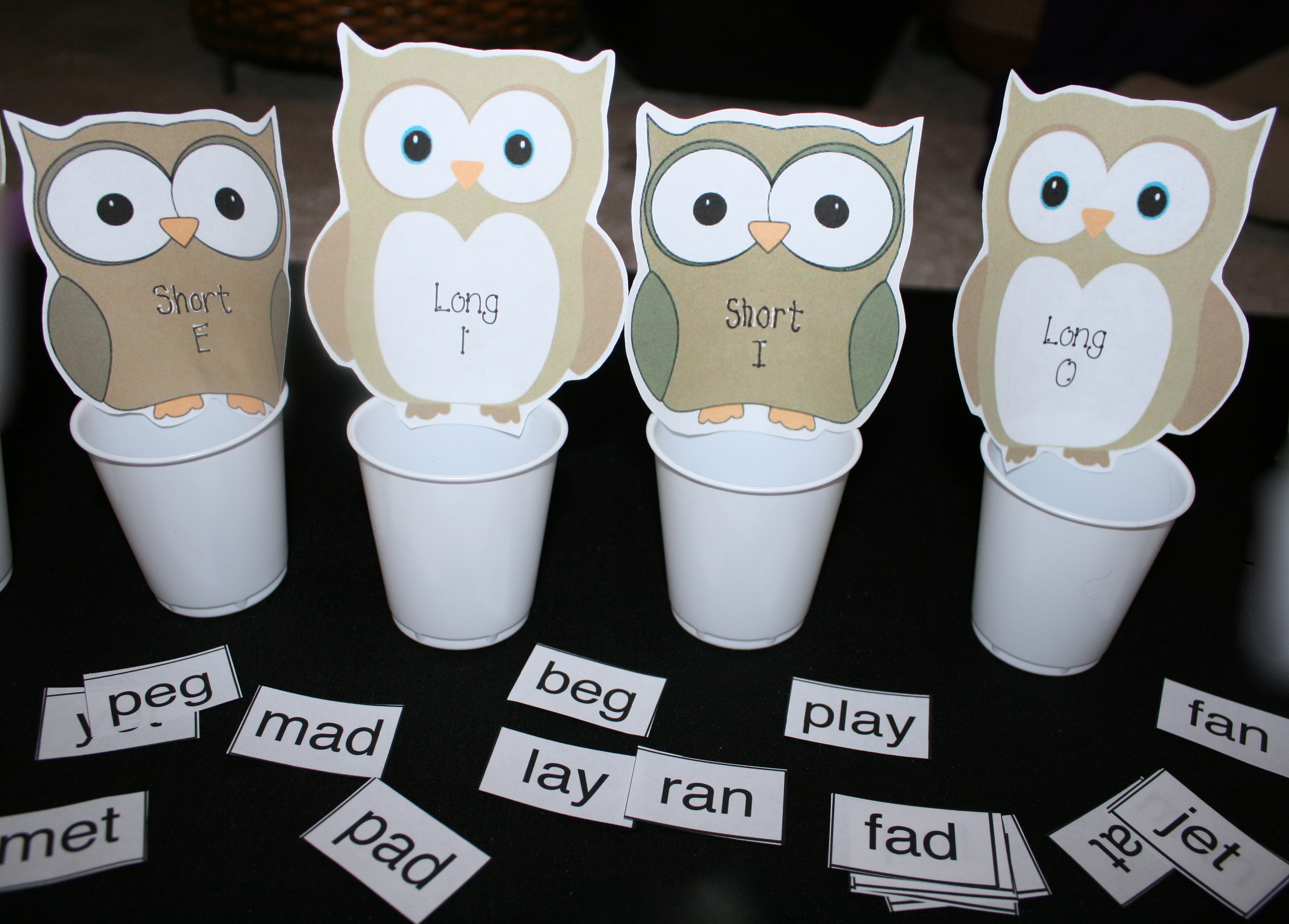 long and short vowel activities, vowel lessons, common core lessons for kindergarten, common core lessons, for 1st grade, daily 5 activities, word work activirties, CVC lessons, Dolch word lessons, Dolch word activities, CVC word activities, CVC games, Dolch Word games, owl activities, word games,