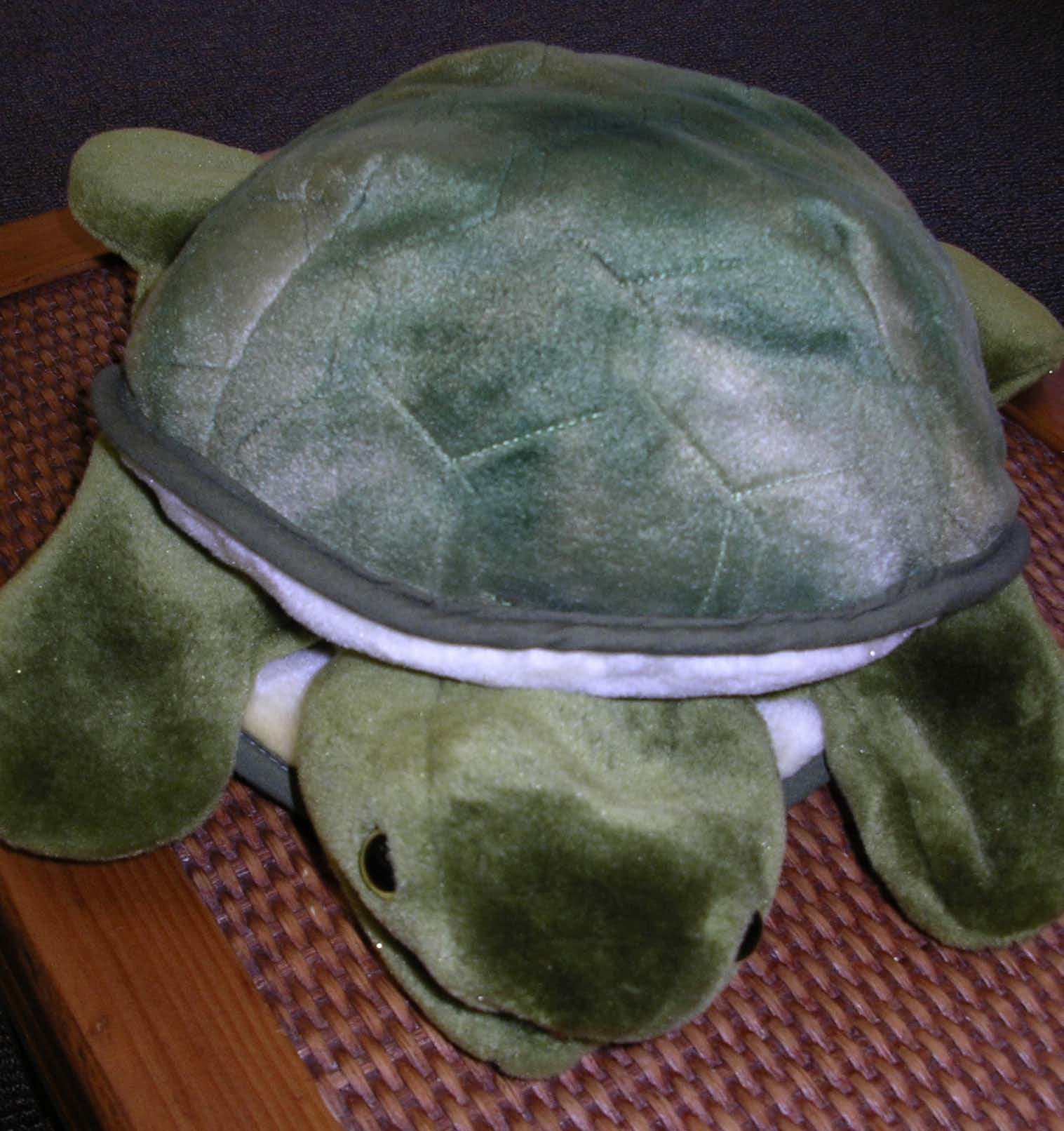 tattle the tattle tale turle, classroom management