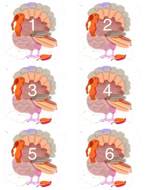 Turkey Counting Cards