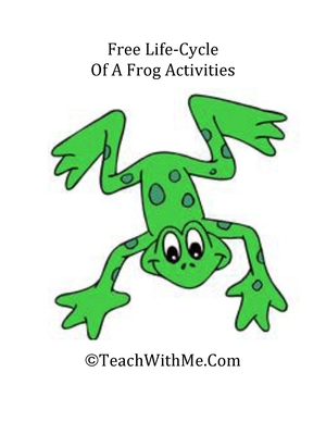 Free The Life Cycle Of A Frog Activities