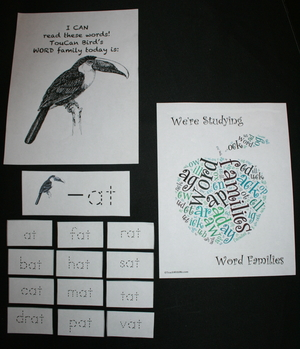 Word Bird Word Family Words