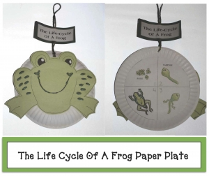 Life Cycle Of A Frog Paper Plate Craftivity