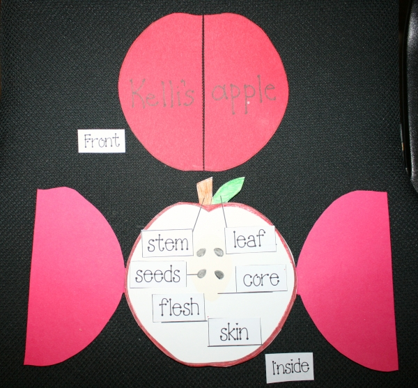 Apple Labeling Activity