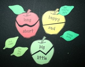 Antonym Apples With Synonym Leaves