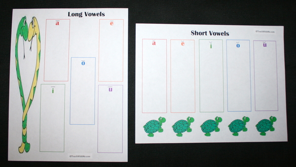 Long and Short Add A Word Vowel Anchor Charts