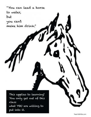 You Can Lead A Horse Writing Prompt Poster