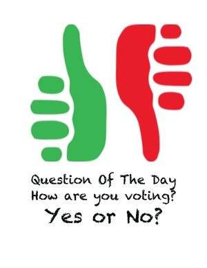 Question Of The Day Thumb Poster